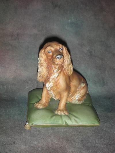 Собака Спаниель на зеленой подушке