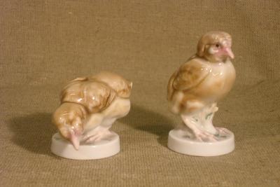 Цыплята, фарфор Энс